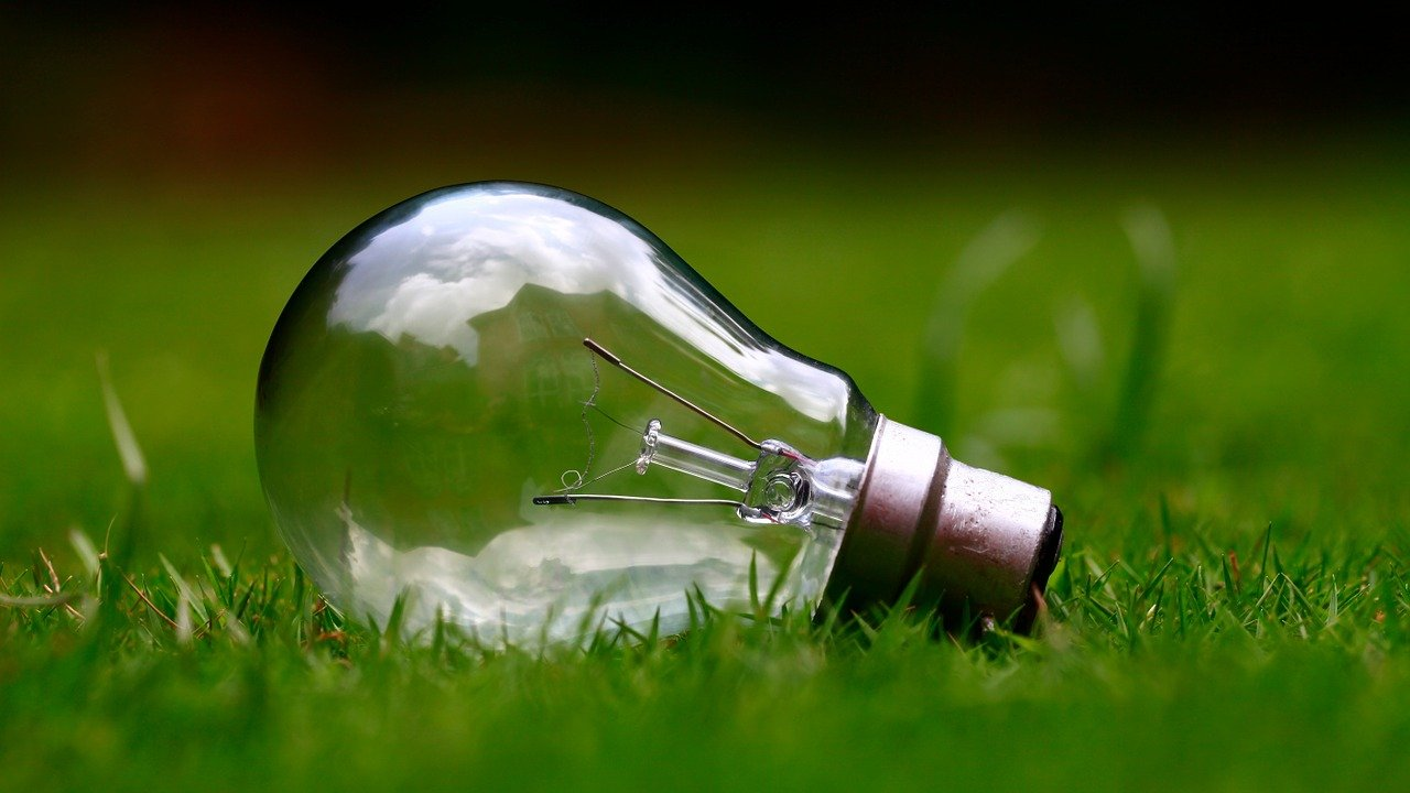 L'energia Si Nutre Anche Di Clorofilla Alkaenergy