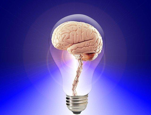 Perche Ti Senti Gia Stanco Al Mattino Brain Alkaenergy