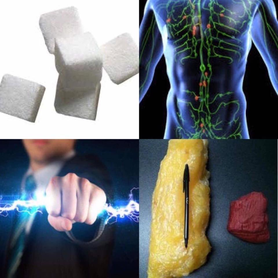 Glucosio Sistemalinfatico Energia Grasso Endogeno