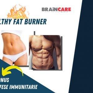 Healthy Fat Burner Alkaenergy Webnair
