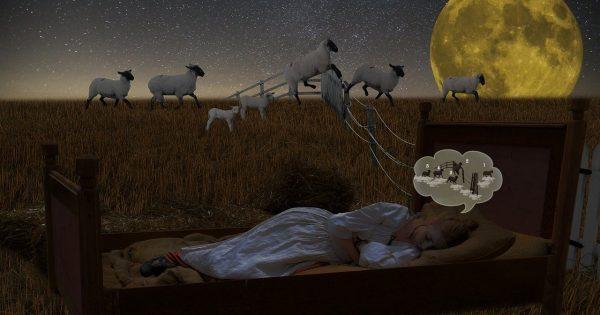 A Volte è Una Questione Di Sonno Alkaenergy
